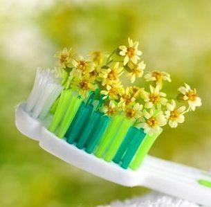 Укрепление зубов и десен народными средствами