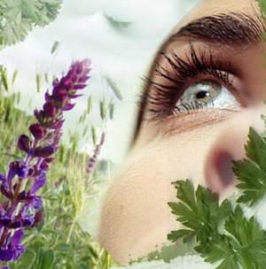 Лечение подергивания глаз народными средствами