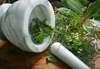 Лечение эрозии шейки матки травами