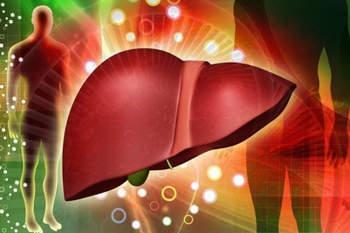 Народные средства лечения стеатоза печени