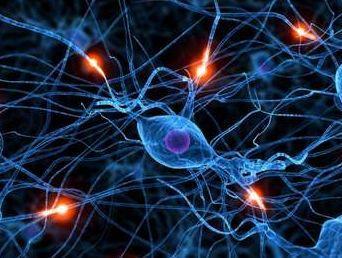 Причины возникновения онкологии