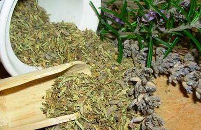 Полынь трава в народной медицине. Рецепты с полынью