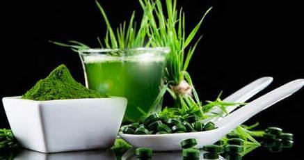 Лечебные свойства хлореллы