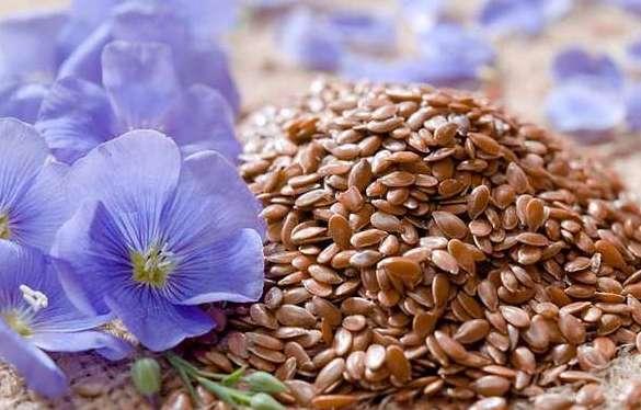 Семена льна для лечения давления