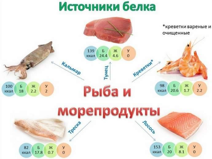 Источники белка морепродукты