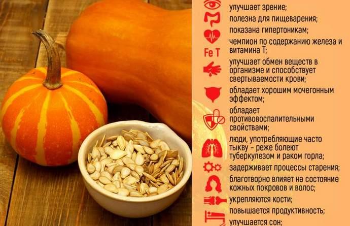Польза тыквы для здоровья