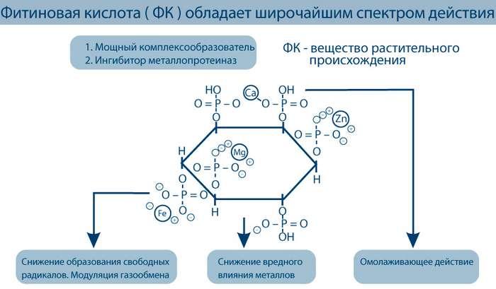 Полезные свойства фитиновой кислоты