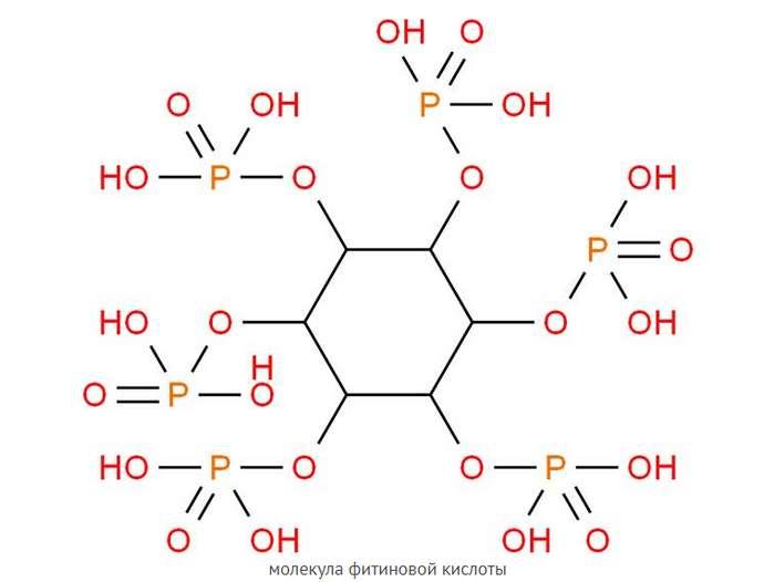 Молекула фитиновой кислоты